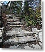 Arboretum Stairway Metal Print by Tim Allen