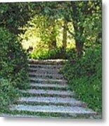 Arboretum Steps Metal Print