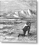 Arctic: Bear Hunting, 1871 Metal Print