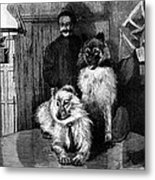 Arctic Explorer And Dogs, 19th Century Metal Print by