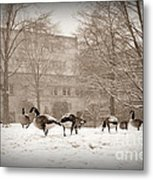 Are You Joining Us... Metal Print