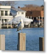 Are You Watching Me Metal Print