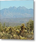 Arizona Scenic V Metal Print