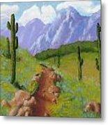 Arizona Trails Metal Print