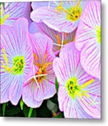 Arkansas Wildflowers Metal Print