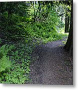 Around Another Bend In The Trail On Mt Spokane Metal Print