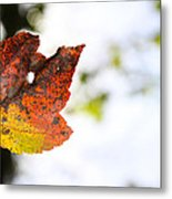 Artsy-fartsy Autumn I Metal Print