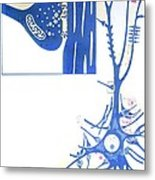 Artwork Of A Nerve Cell Of The Brain & A Synapse Metal Print