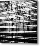 As The Swamp Sleeps Metal Print by Empty Wall