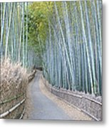 Asia Japan Kyoto Arashiyama Sagano Metal Print by Rob Tilley
