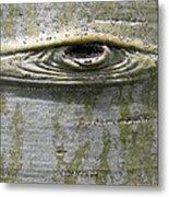 Aspen Eye Metal Print
