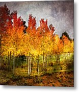 Aspen Grove In Autumn Metal Print