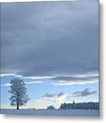 Aspen Tree And Winter Clouds Metal Print