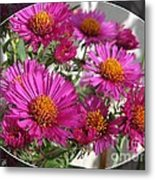 Aster Named September Ruby Metal Print