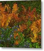 Asters And Ferns Metal Print
