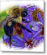 Asters With Dew And Bumblebee Metal Print