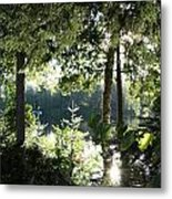 At Home In The Woods Metal Print