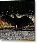 At The End Of Lifes Road Metal Print