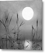 At The Full Moon Metal Print