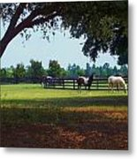 At The Ranch Metal Print