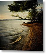 At The River Bend Metal Print