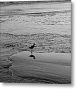 At Twilight In Black And White Metal Print