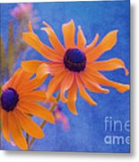 Attachement - S11at01d Metal Print by Variance Collections