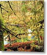 Attack Of The Moss Metal Print