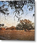 Audubon Golf Course Metal Print