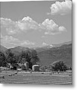 August Hay 75th  St Boulder County Colorado Black And White  Metal Print
