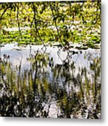 August Reflections Metal Print