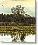 Auspicious Reflections Metal Print