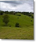 Aussie Countryside Metal Print