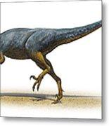 Austroraptor Cabazai, A Prehistoric Era Metal Print