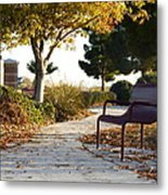 Autum At The Park Metal Print