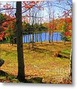 Autum Splender Metal Print