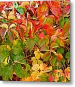 Autumn 4 Metal Print by Elena Mussi
