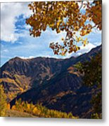 Autumn Above Aspen Metal Print