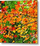 Autumn Abstract Painterly Metal Print