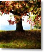 Autumn Acorn Tree Metal Print