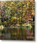 Autumn Ambience Metal Print