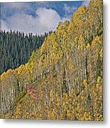 Autumn Aspens San Juan Mountains Metal Print
