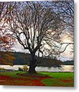 Autumn At British Camp Metal Print