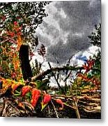 Autumn Breeze Through The Trees    Alt Metal Print