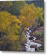Autumn Canyon Colorado Scenic View Metal Print