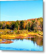 Adirondack Color 54 Metal Print