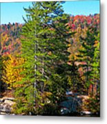 Adirondack Color P8 The White Bench Metal Print
