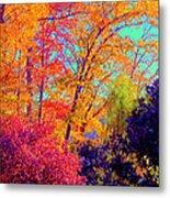Autumn Colors 13 Metal Print