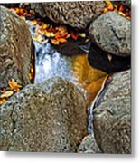Autumn Colors Reflected In Pool Of Water Metal Print