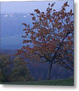 Autumn Colour At Dusk Metal Print
